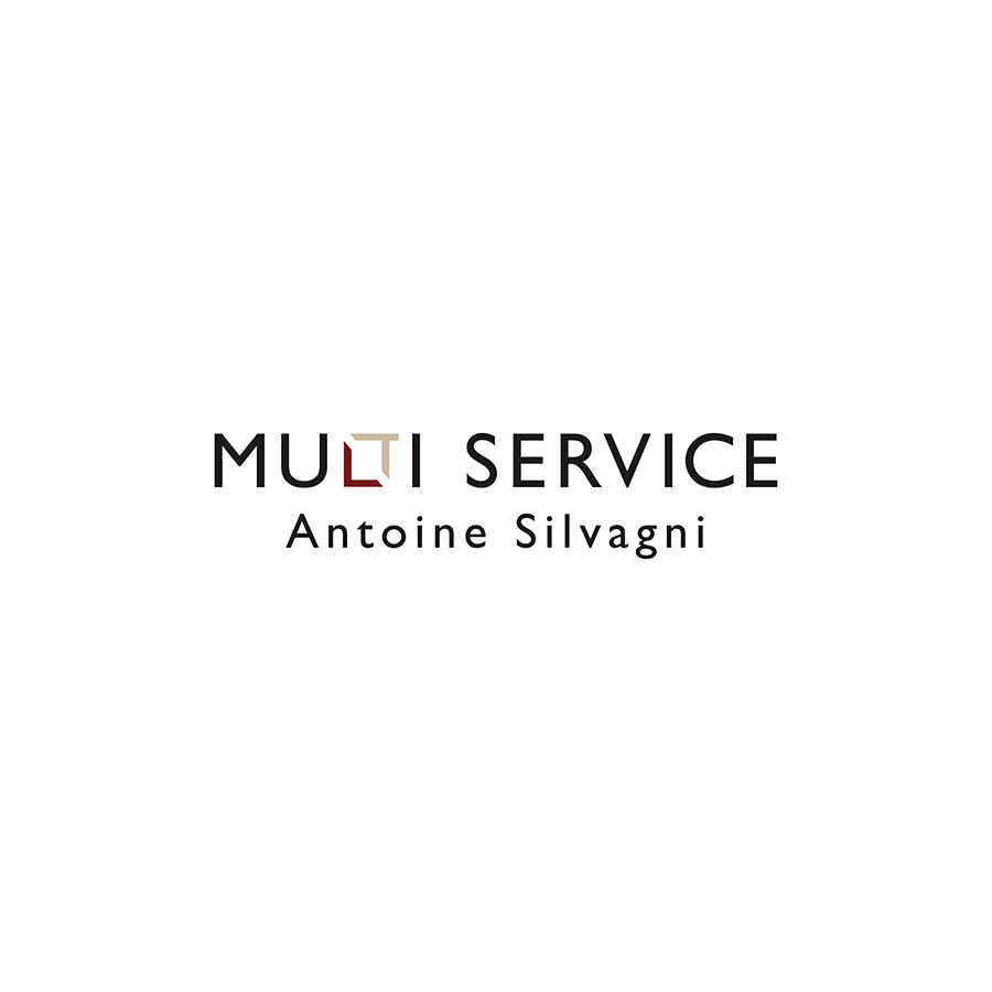 Multi-Service_Logo-Payoff-01_pos